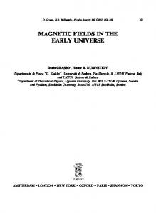 MAGNETIC FIELDS IN THE EARLY UNIVERSE