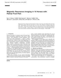 Magnetic Resonance Imaging in 18 Horses with Palmar Foot Pain