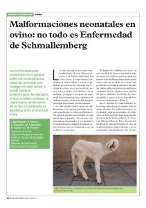 Malformaciones neonatales en ovino: no todo es Enfermedad de Schmallemberg