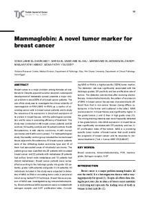 Mammaglobin: A novel tumor marker for breast cancer