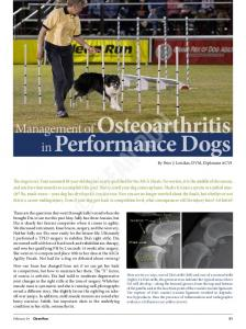 Management of Osteoarthritis in Performance Dogs