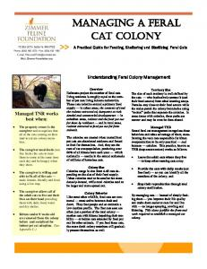 MANAGING A FERAL CAT COLONY