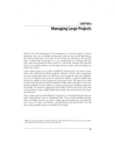 Managing Large Projects