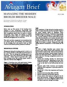 MANAGING THE MODERN JULY 2008 BROILER BREEDER MALE