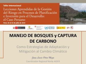MANEJO DE BOSQUES y CAPTURA DE CARBONO