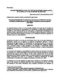 MANEJO POSCOSECHA EN EL CULTIVO DE ZANAHORIA (Daucus carota L), EN LA ZONA ALTA DEL MUNICIPIO DE JINOTEGA