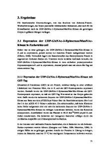 ManNAc- Kinase in Escherichia coli