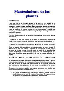 Mantenimiento de las. plantas
