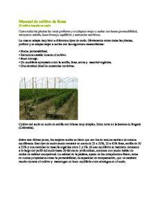 Manual de cultivo de Rosa El cultivo basado en suelo