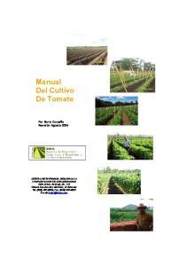 Manual Del Cultivo De Tomate