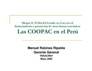 Manuel Rabines Ripalda Gerente General