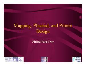 Mapping, Plasmid, and Primer Design. Shifra Ben-Dor