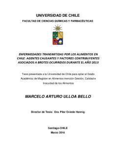 MARCELO ARTURO ULLOA BELLO