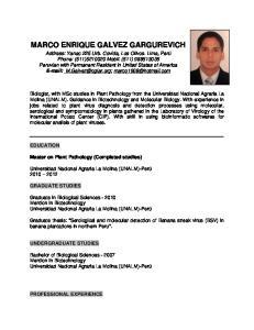 MARCO ENRIQUE GALVEZ GARGUREVICH