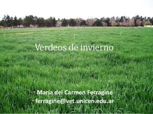 María del Carmen Ferragine