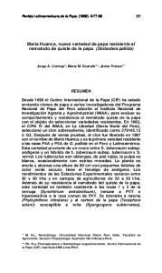 Maria Huanca, nueva variedad de papa resistente al nematodo de quiste de la papa (Globodera pallida)