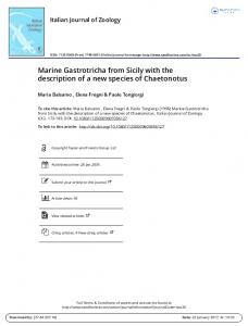Marine Gastrotricha from Sicily with the description of a new species of Chaetonotus