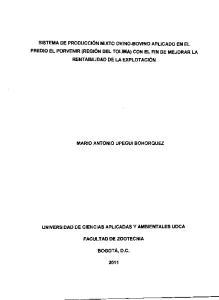 MARIO ANTONIO UPEGU! BOHORQUEZ