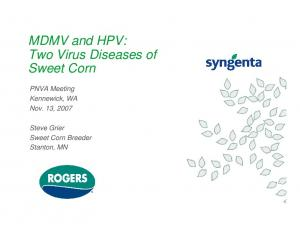 MDMV and HPV: Two Virus Diseases of Sweet Corn