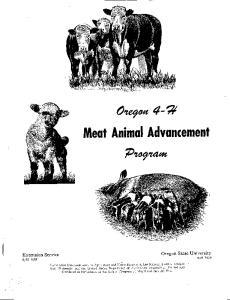 Meat Animal Advancement