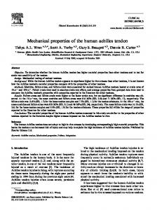 Mechanical properties of the human achilles tendon