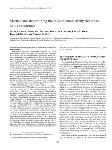 Mechanisms determining the ratio of conductivity clearance to urea clearance