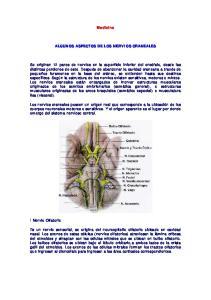 Medicina ALGUNOS ASPECTOS DE LOS NERVIOS CRANEALES