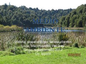MEDIO AMBIENTE. Material preparado por las estudiantes Loza, Macchiavello, Recarey Grupo reglamentado 2012 Lic. Ippoliti