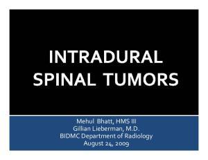 Mehul Bhatt, HMS III Gillian Lieberman, M.D. BIDMC Department of Radiology August 24, 2009
