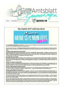 MEINE CITY. MEIN FEST