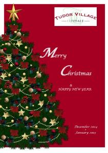 Merry Christmas & HAPPY NEW YEAR. December 2014