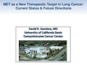 MET as a New Therapeutic Target in Lung Cancer: Current Status & Future Directions