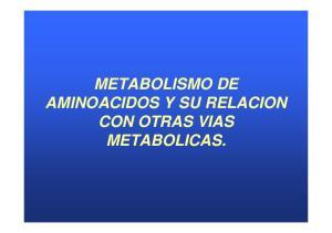 METABOLISMO DE AMINOACIDOS Y SU RELACION METABOLICAS