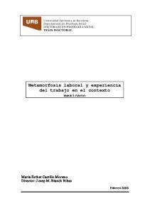 Metamorfosis laboral y experiencia del trabajo en el contexto mexicano