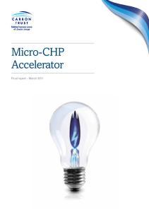 Micro-CHP Accelerator. Final report March 2011