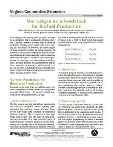 Microalgae as a Feedstock for Biofuel Production