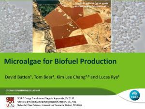 Microalgae for Biofuel Production
