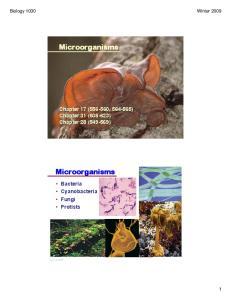 Microorganisms. Microorganisms. Chapter 17 ( , ) Chapter 31 ( ) Chapter 28 ( ) Bacteria Cyanobacteria Fungi Protists