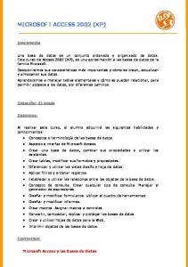 MICROSOFT ACCESS 2002 (XP)