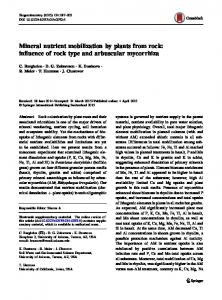 Mineral nutrient mobilization by plants from rock: influence of rock type and arbuscular mycorrhiza