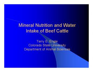 Mineral Nutrition and Water Intake of Beef Cattle. Terry E. Engle Colorado State University Department of Animal Sciences