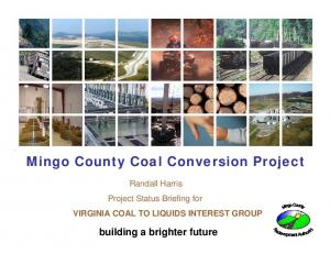 Mingo County Coal Conversion Project