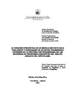 Mirtha Alicia Rios Silva