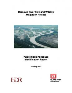 Missouri River Fish and Wildlife Mitigation Project. Public Scoping Issues Identification Report