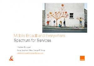 Mobile Broadband Everywhere: Spectrum for Services