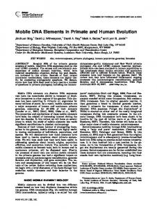 Mobile DNA Elements in Primate and Human Evolution