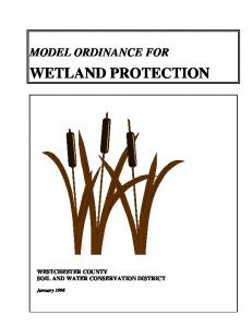 MODEL ORDINANCE FOR WETLAND PROTECTION WESTCHESTER COUNTY SOIL AND WATER CONSERVATION DISTRICT