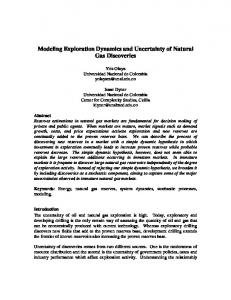 Modeling Exploration Dynamics and Uncertainty of Natural Gas Discoveries