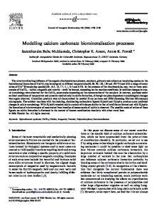 Modelling calcium carbonate biomineralisation processes