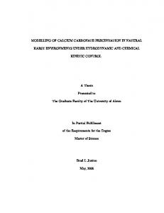 MODELLING OF CALCIUM CARBONATE PRECIPITATION IN NATURAL KARST ENVIRONMENTS UNDER HYDRODYNAMIC AND CHEMICAL KINETIC CONTROL. A Thesis